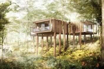 CWH#25 Treetop Hideaway